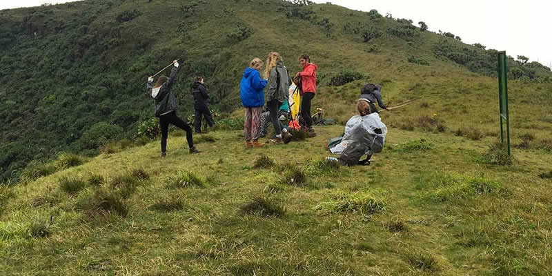 Mountain Bisoke Hike in Rwanda